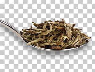 Darjeeling Tea White Tea Golden Monkey Tea PNG