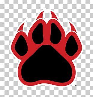 Dog Black Panther Cougar Cat Panthera PNG