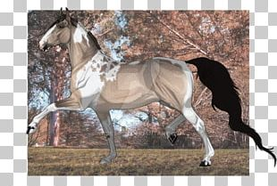 Mare Mustang Stallion Rein Halter PNG
