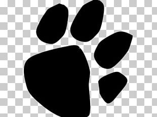 Paw Line PNG