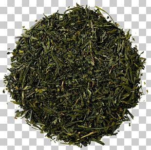 Gyokuro Green Tea Masala Chai Nilgiri Tea PNG