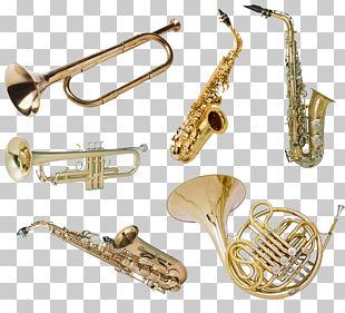 Musical Instrument Trumpet Saxophone Tuba Brass Instrument PNG