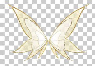 Moth Symmetry Art Line Pattern PNG