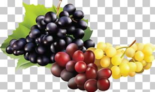 Sultana Zante Currant Grape Seedless Fruit Raceme PNG
