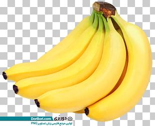 Banana Bread Lady Finger Banana Banana Peel PNG