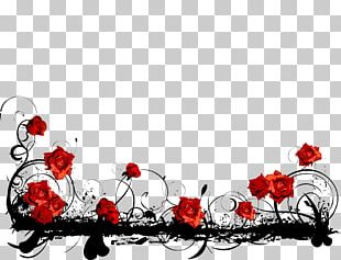 Borders And Frames Red Rose PNG