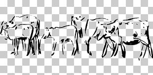Dairy Cattle Sketch Sheep Baka Goat PNG