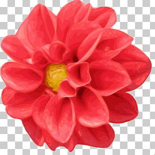 Dahlia Scalable Graphics PNG