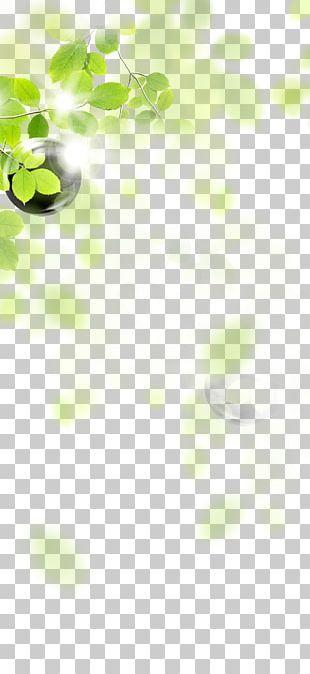 Green Leaf Angle LINE Pattern PNG