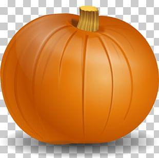 Cucurbita Pepo Pumpkin PNG