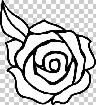 Rose Outline Drawing PNG