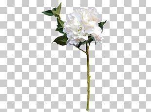 Cut Flowers Floral Design Flower Bouquet Artificial Flower PNG