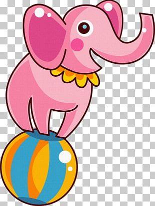 Circus Cartoon Indian Elephant PNG