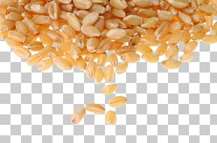 Common Wheat Cereal Whole Grain Wheat Berry Food Grain PNG