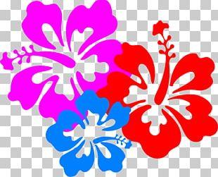 Hawaiian Flower PNG