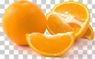Orange Juice Bitter Orange Tangerine PNG