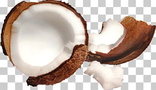 Coconut Milk Desktop High-definition Video High-definition Television PNG