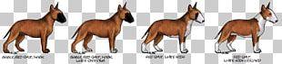 Canidae Mustang Dog Camel Mammal PNG