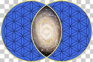 Vesica Piscis Sacred Geometry Symmetry Urinary Bladder PNG