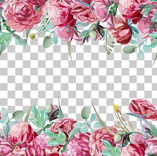 Garden Roses Flower Pattern PNG
