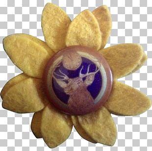 Flower Petal Violet PNG