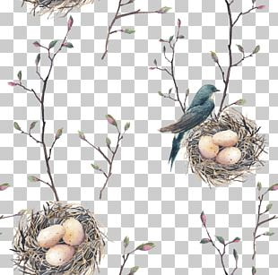 Bird Nest Swallow Tree Pattern PNG