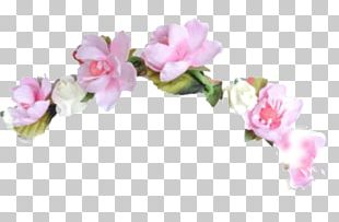 Floral Design Wreath Photography Texture Mapping Akame Ga Kill! PNG