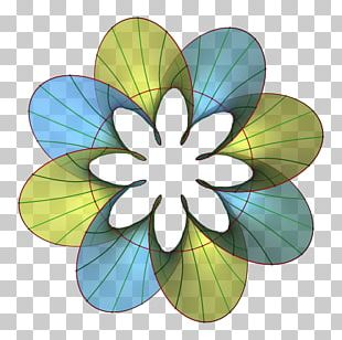 Flower Car Geometry Helicoid Research PNG