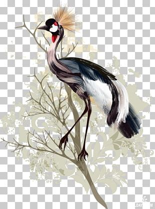 Bird Crane Drawing Watercolor Painting PNG