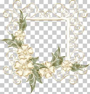 Frames Floral Design Photography PNG