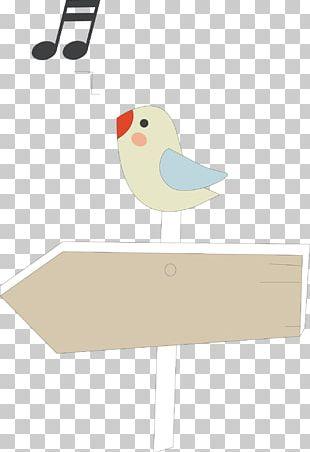 Bird Singing Drawing PNG