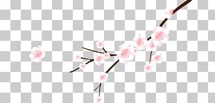 Cherry Blossom Cerasus Branch Flower PNG