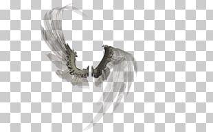 Rendering Buffalo Wing PNG