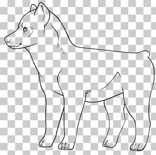 Dog Breed Whiskers Line Art Pack Animal PNG