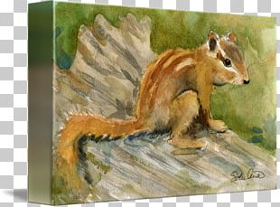 Chipmunk Watercolor Painting Art Mixed Media PNG
