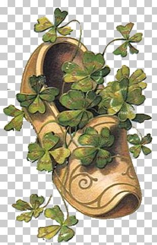 Saint Patrick's Day Shamrock 17 March PNG