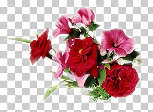 Flower Desktop Display Resolution High-definition Television PNG