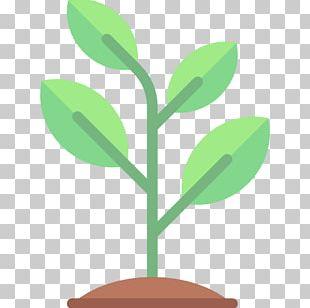 Garden Tool Gardening PNG