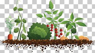 Community Gardening Roof Garden PNG