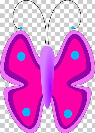 Butterfly Pink Purple PNG