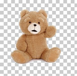 Teddy Bear PNG