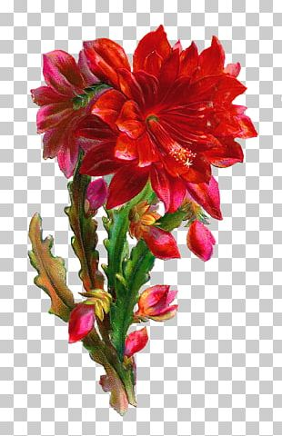 Flower Rose Red Gift Floristry PNG