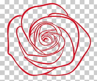 Drawing Stock Photography Rose Illustration PNG
