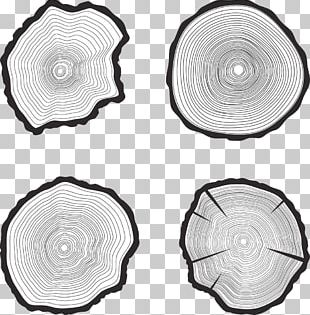 Tree Trunk Aastarxf5ngad PNG