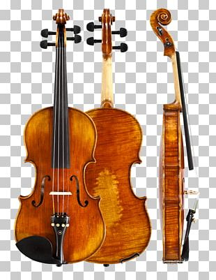 Violin Viola Double Bass Musical Instruments Bowed String Instrument PNG