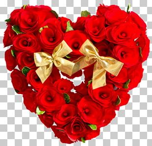 Valentine's Day Stock Photography Rose Flower Gift PNG