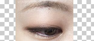 Eyelash Extensions Eye Shadow Eye Liner Eyebrow Lip Liner PNG