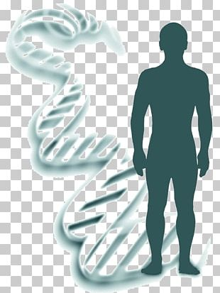 Genetics Heredity Forensic Identification DNA PNG