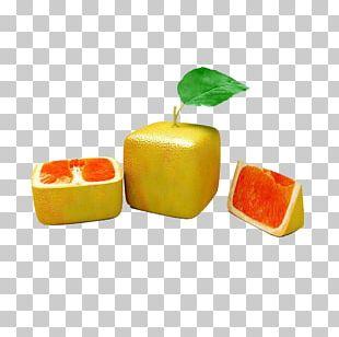 Orange Auglis Fruit Vegetable PNG