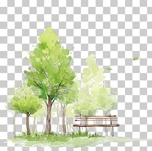 How To Paint Trees In Watercolor Watercolor Painting Sketch PNG